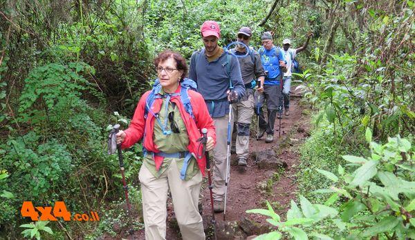 היום השני לטיפוס - יוצאים מהיער הטרופי לעבר הסוואה