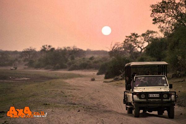 בוצוואנה - ארץ שלא השתנתה הרבה מאז ימי בראשית