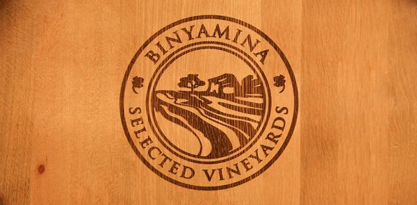 יינות יקב בנימינה לחורף