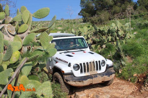 מועדון Jeep מטייל מנחל תבור לגלבוע - פברואר 2021