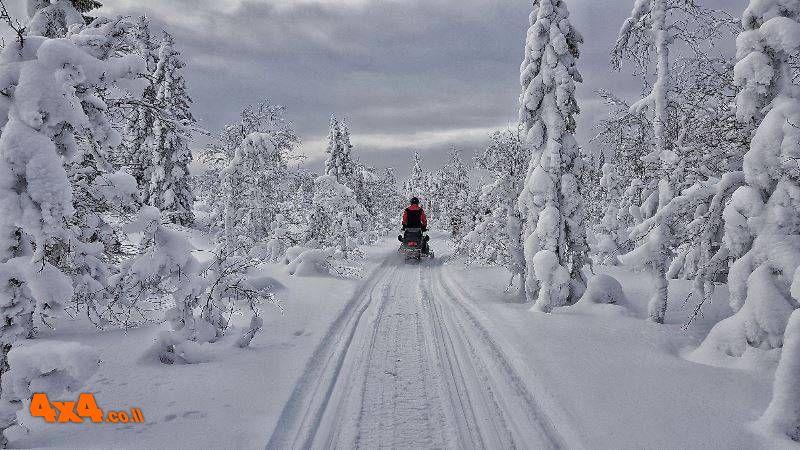ספארי חורף אקסטרים - שוודיה