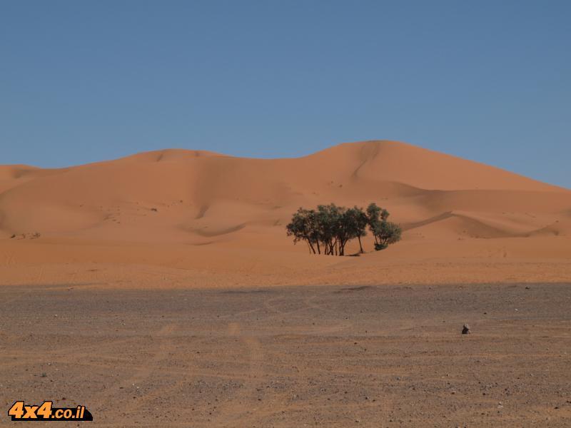 פורום: מרוקו - מסע אופנועים
