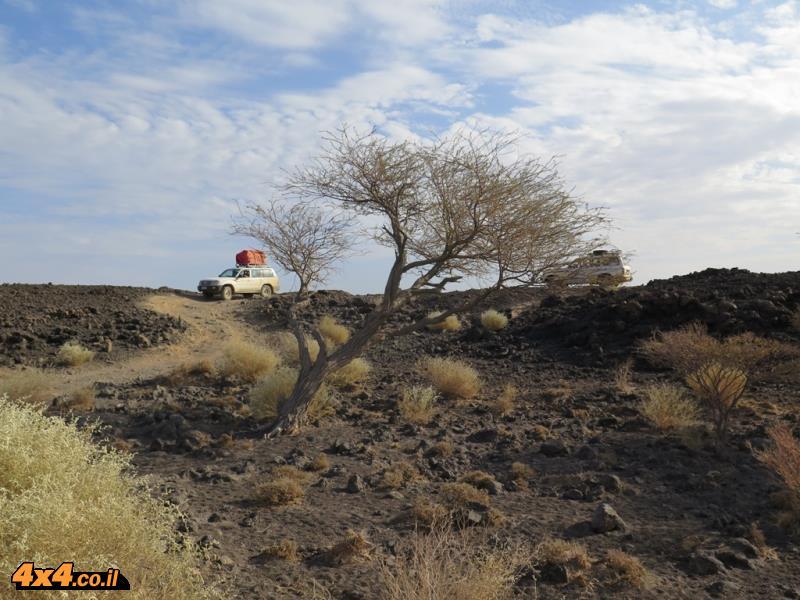 מטפסים להר הגעש ארטה-אלה