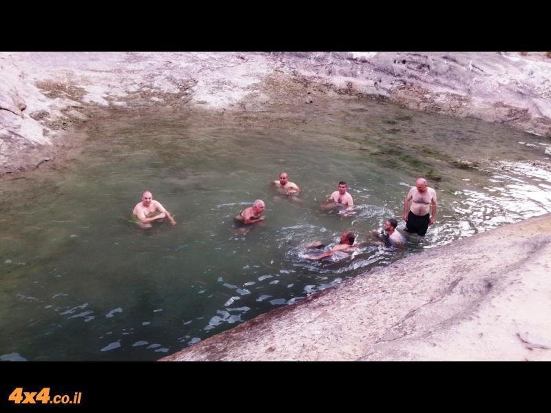 הבריכה בדיסיי