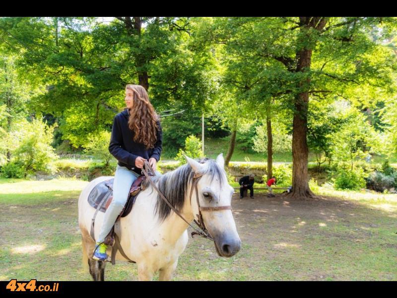 רכיבה על סוסים מעט לפני הטיפוס למעבר ההרים
