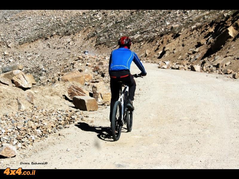 רוכב אופניים במעלה הדרך לקארדונג-לה