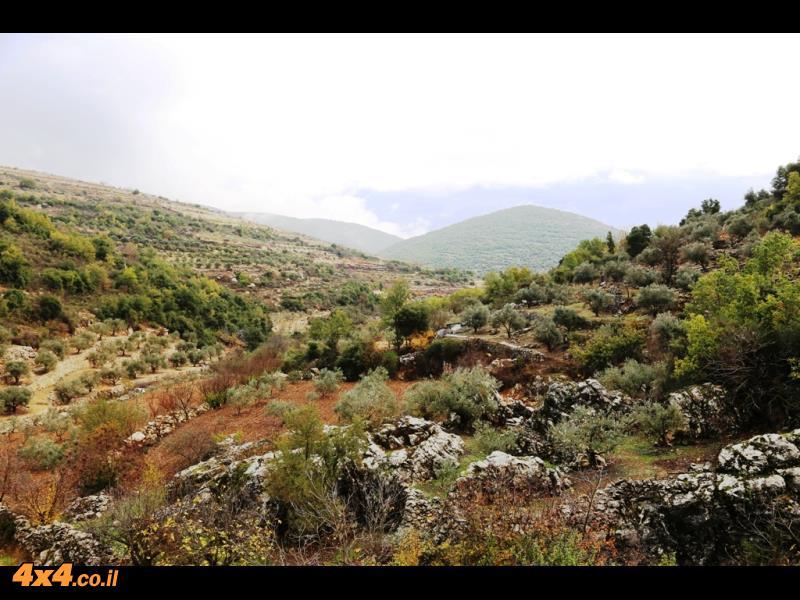 הר המירון