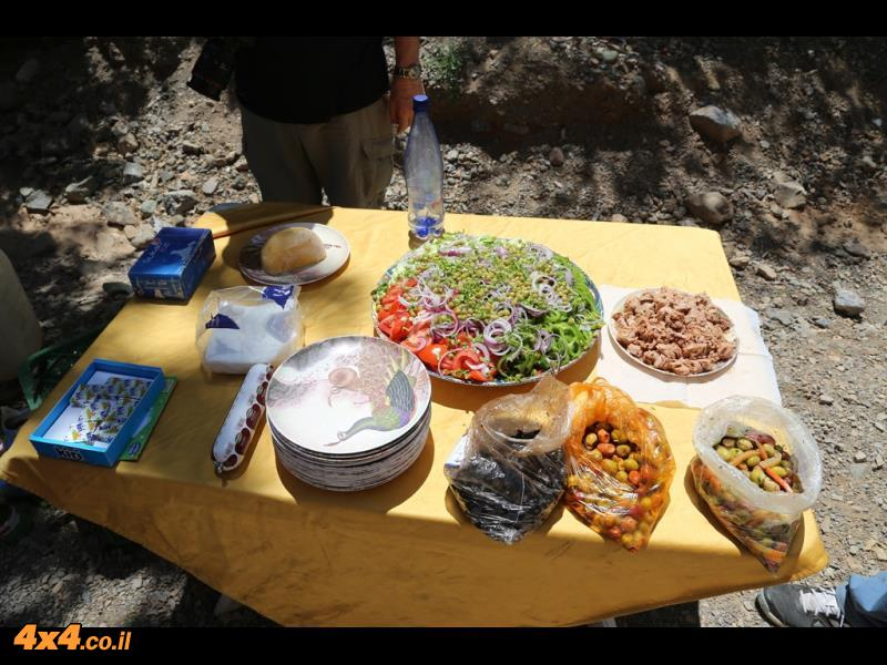 ארוחת צהרים לתפארת הברברים