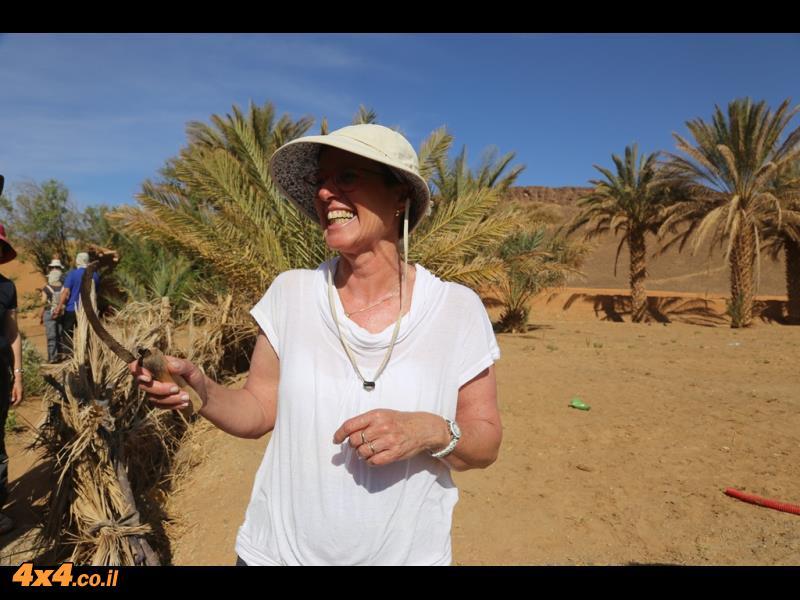 מי תהום במדבר הסהרה