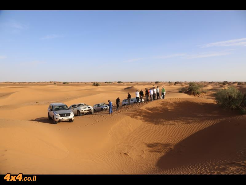 מתחילים ללמוד את רזי הדיונות במדבר