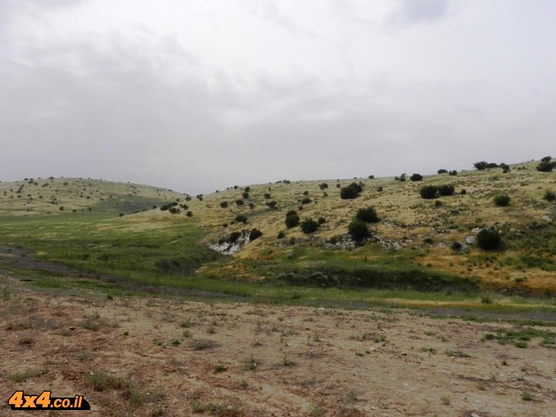 סיור בעיר האבודה
