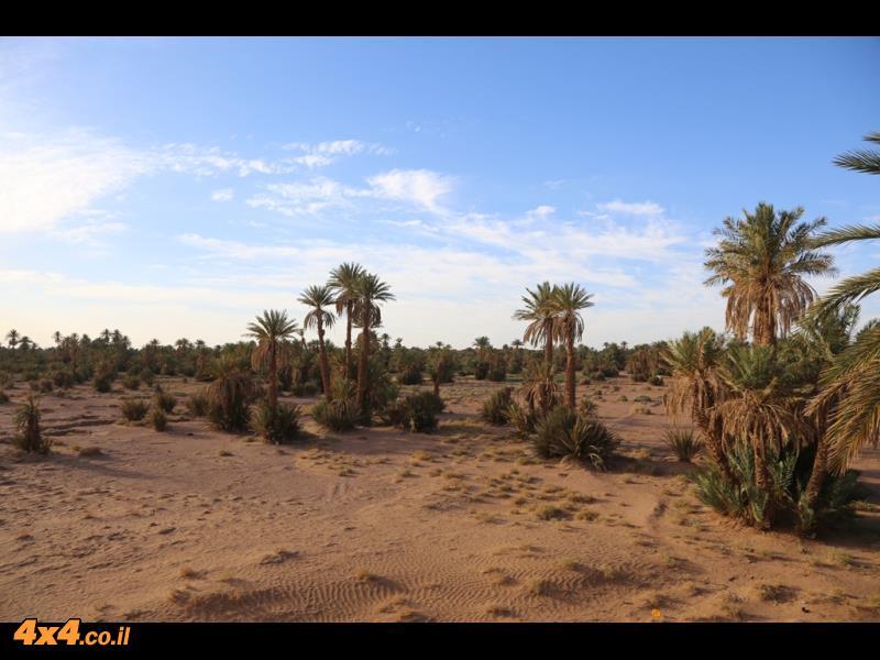 בוקר טוב לסהרה - השמים כחולים ואין זכר לסופת החול מאתמול
