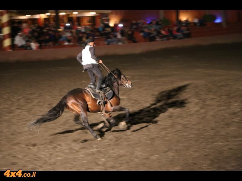 פנטזיה - מופע סוסים רכובים על-ידי הברברים
