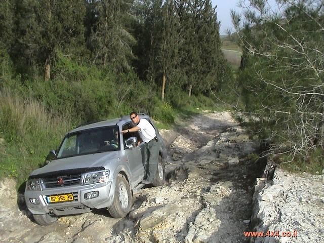 הדרכת נהיגה בסיסית