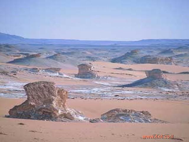 המדבר המערבי - רשמי  מסע  לסהרה 2005