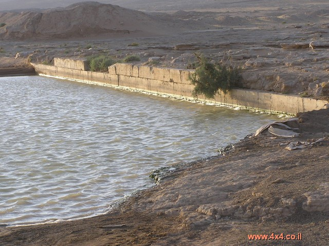 מצודות המדבר