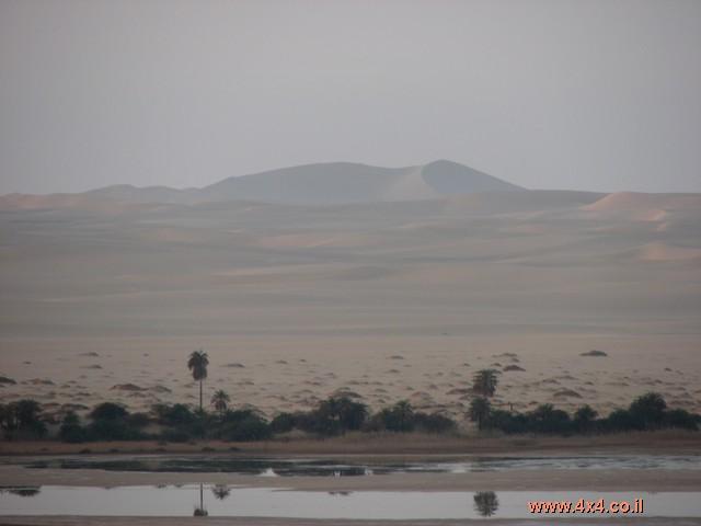 בוקר במדבר