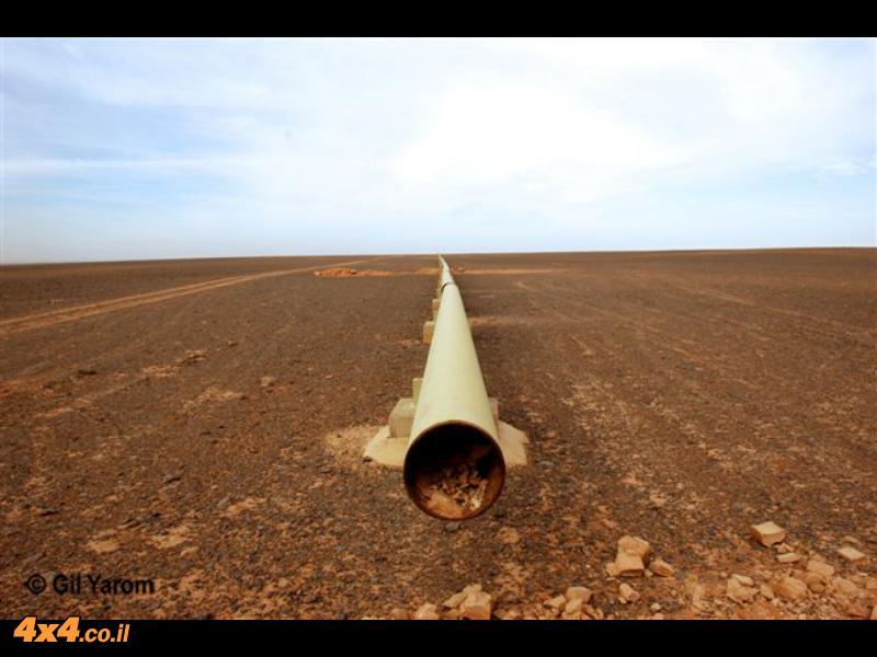 כתבות ותמונות חדשות - מסעות ג'יפים - מזרח ירדן