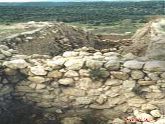 טיול בוץ ופריחה - מאזור המרכז לשפלת יהודה