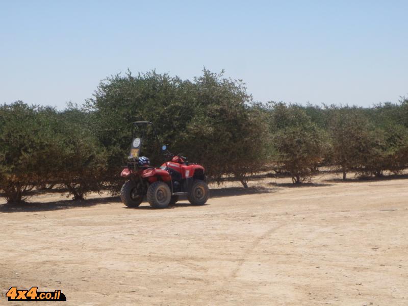 באחה חוצה ישראל 2009