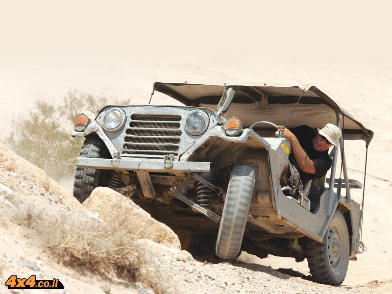 במדבר