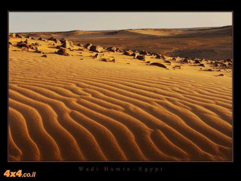 Wadi Humra - Egypt