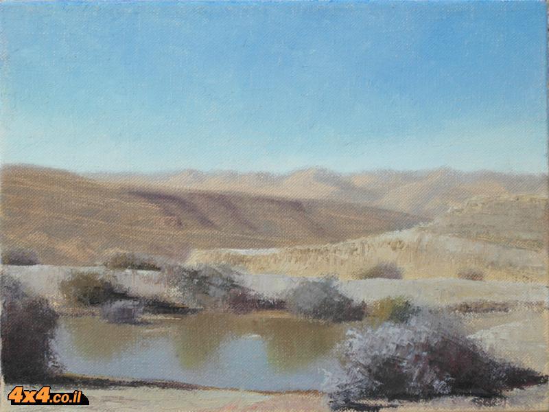 צייר השטח הישראלי מציג בתל אביב