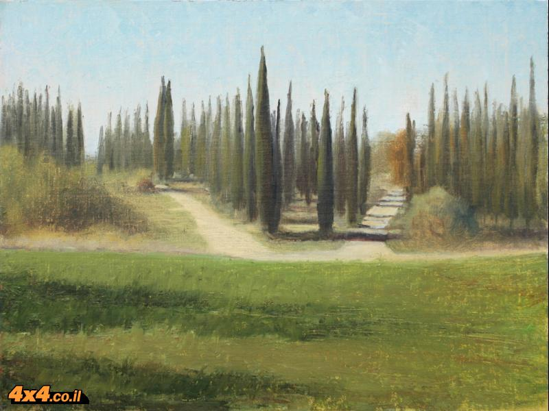 יער בן שמן