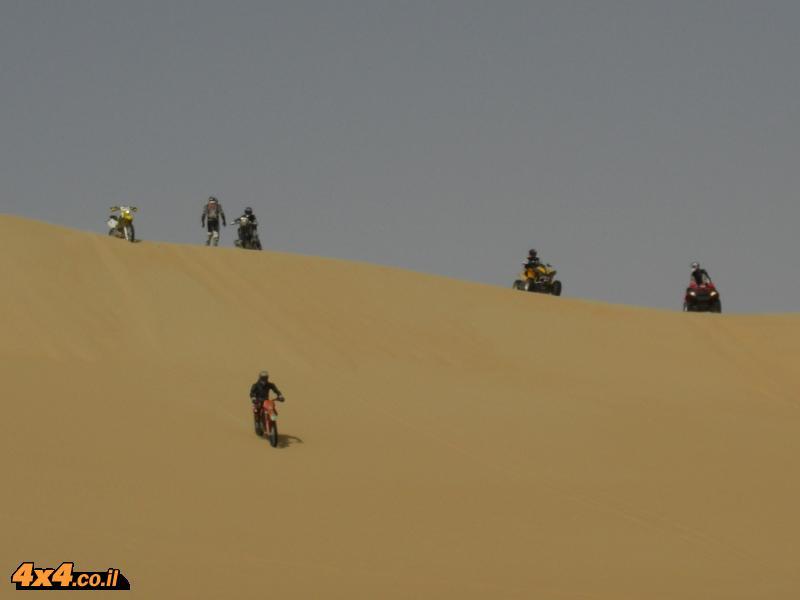 פה (במדבר המערבי) הגודל (והמרחק) קובע