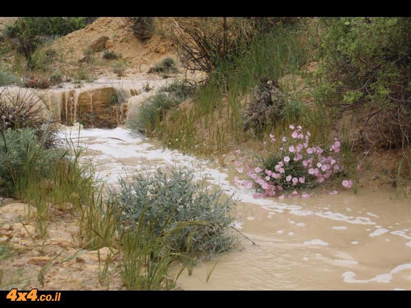 המפגש עם השטפון בנחל חתירה