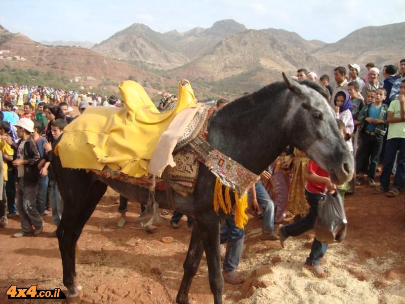 הפסטיבל הברברי באייט בלאל