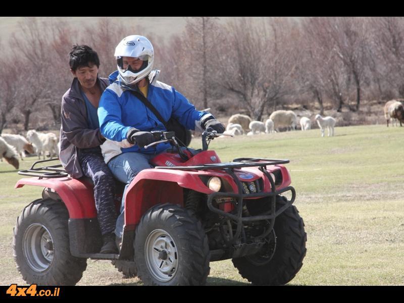 תחליף רועש אך מהיר לסוס המונגולי