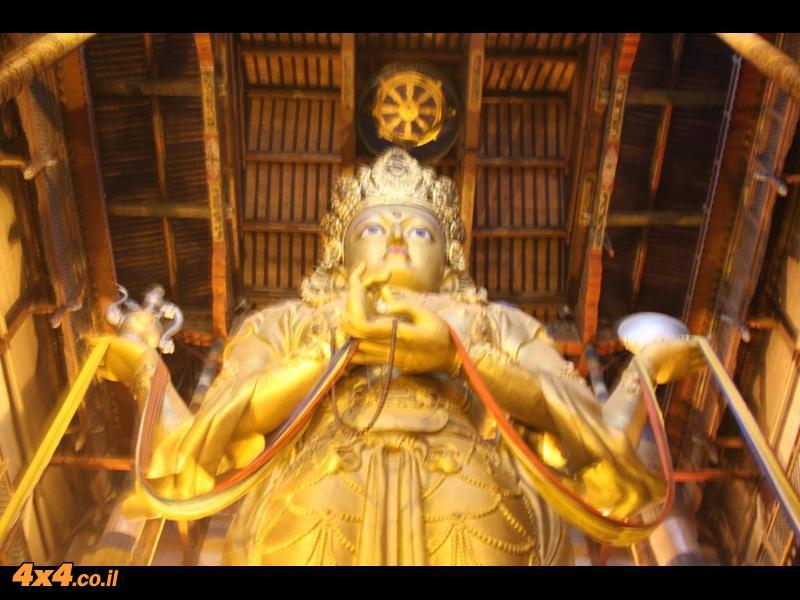 בודהה בכל מקום