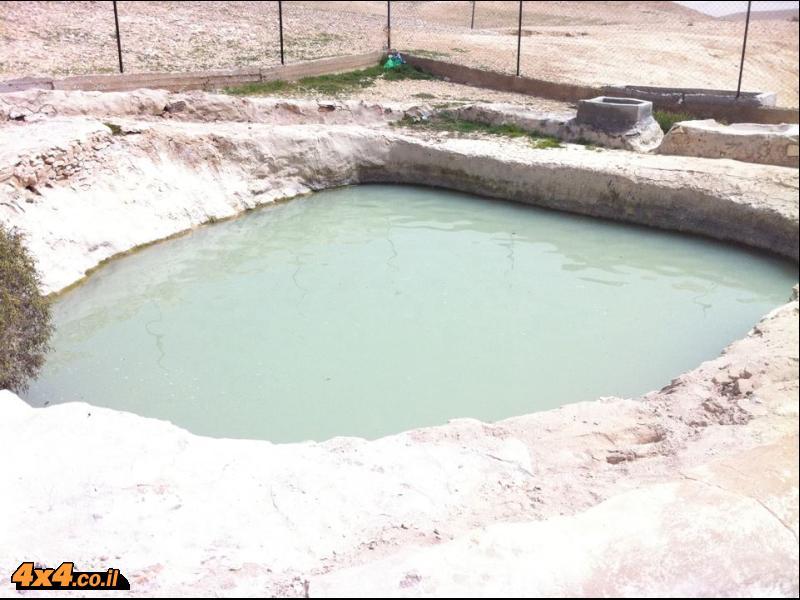 בורות מים מלאים בספר המדבר - צילם שחר שקורי