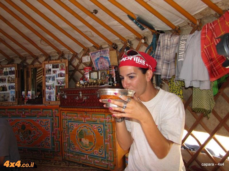 שתיית חלב גמלים בזמן אירוח בגר של נוודים מונגולים