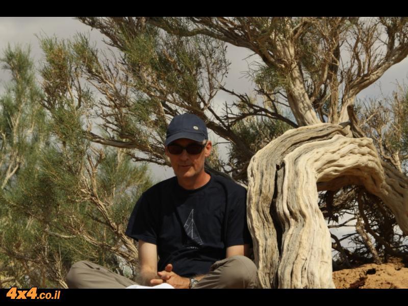תמונות היום השלישי: יער של שיחים, גבעות בוערות ועמק שכבר אין בו דינוזאורים