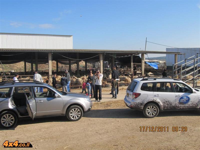 הביקור אצל משפחת אל-עזי בכפר איסטיס