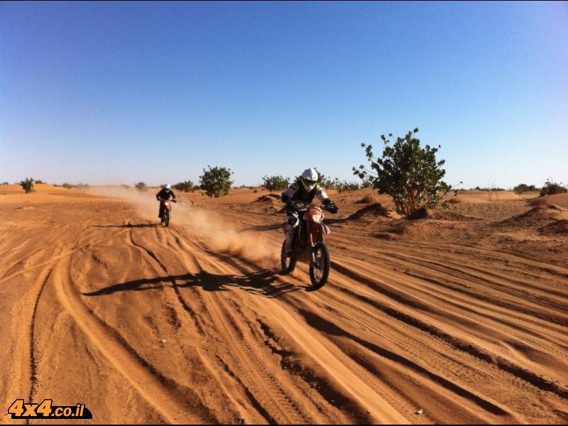 היום החמישי: מלב הדיונות של הסהרה עד לפום זגוויד בקצה המדבר