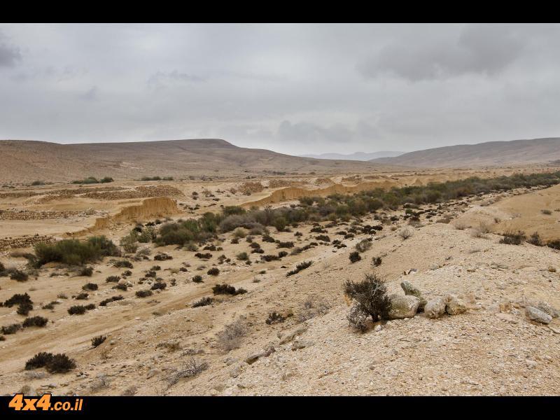 נחל נצר ונחל ציפורים - בין טרסות בנות 2,000 שנה של חקלאות נבטית מדברית עתיקה