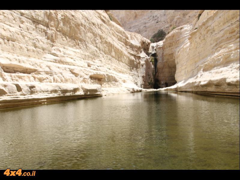 מסלול מעיינות במדבר - נחל צין