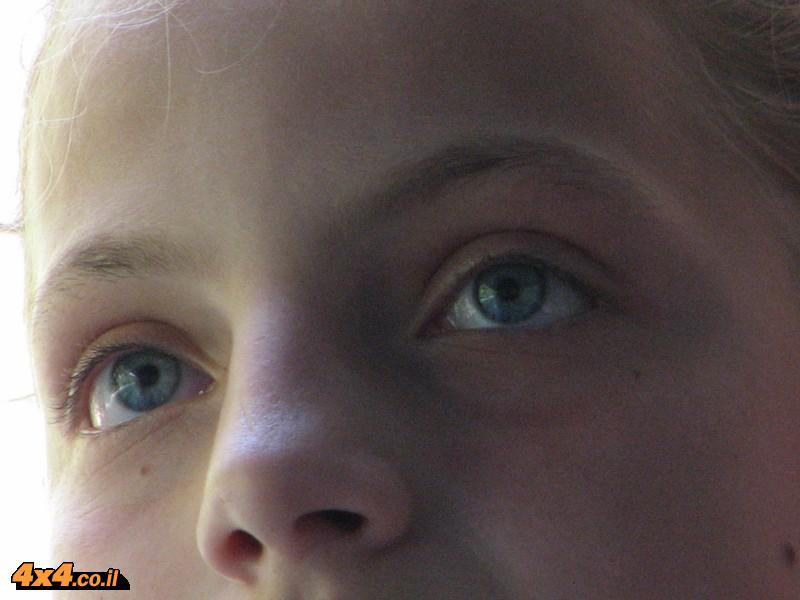 העיניים של אלבניה
