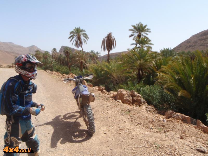 יום שישי: בדרך לואזאזאת