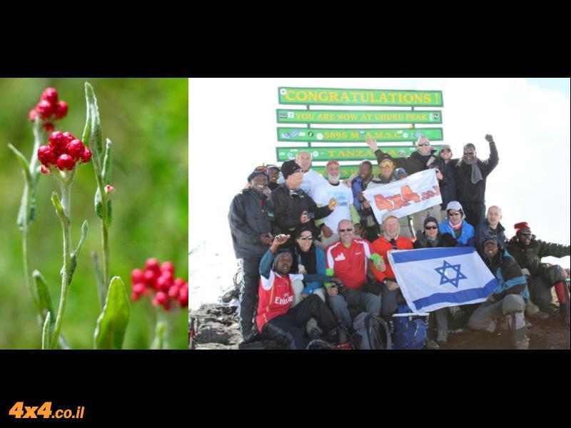 יום עצוב וחג שמח לכל בית ישראל