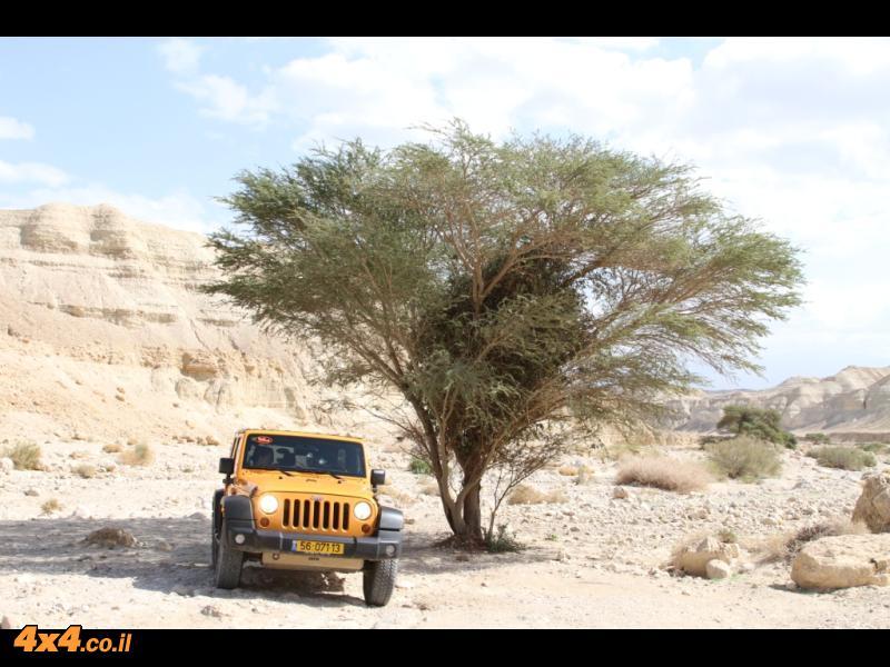 נחל פרצים עליון - מסלול טיול אתגרי במדבר יהודה