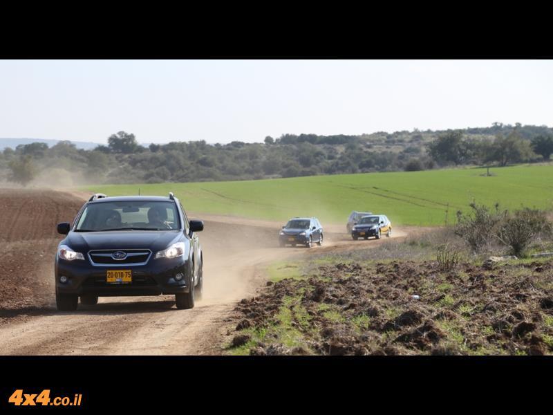 סובארו, פיאט ואלפא יוצאים לשפלת יהודה