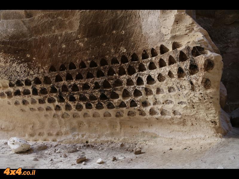 במערות לוזית