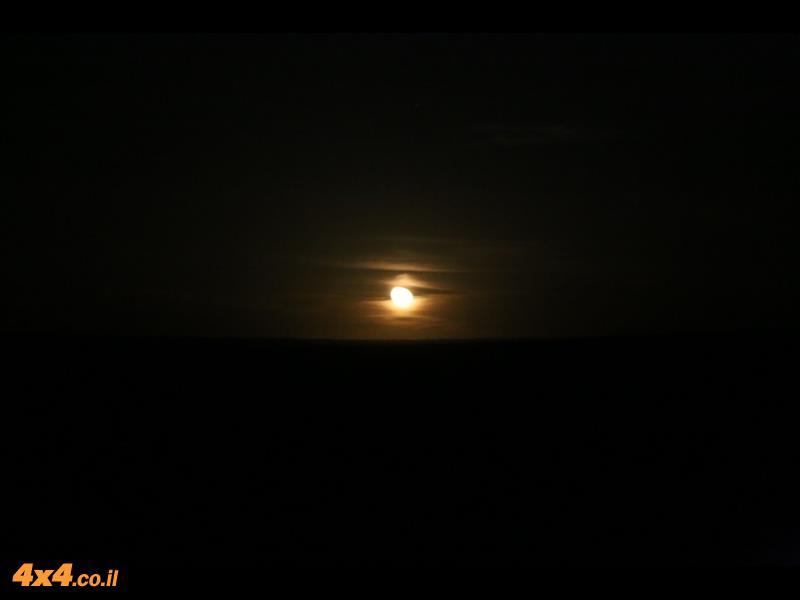 לילה מואר במדבר