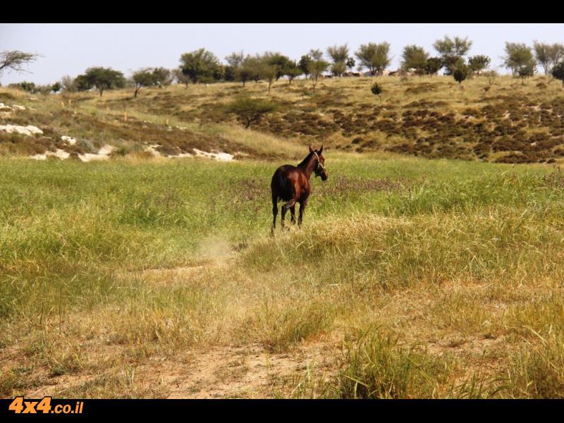 מסע חוצה ישראל - פסח 2014