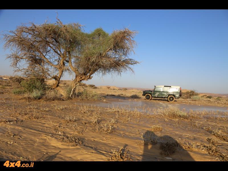 מסע סובב ירדן - דיונות, ביצות, חמדות, לס ובזלות