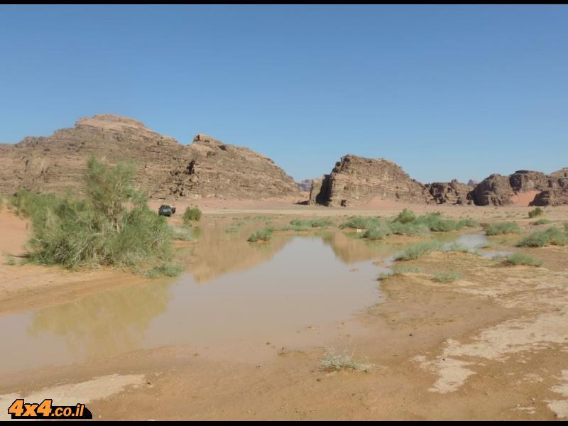 התמונות של יהודה ארמוני מהמדבר הדרומי